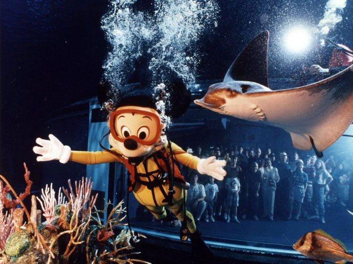 SCUBA Dive Disney