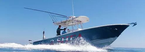 Gulf Dive Charters